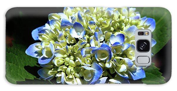 Blue Hydrangea Onstage 2620 H_2 Galaxy Case