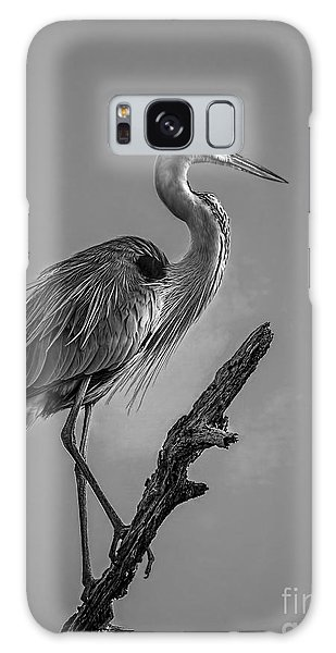 Mangrove Galaxy Case - Blue In Black-bw by Marvin Spates