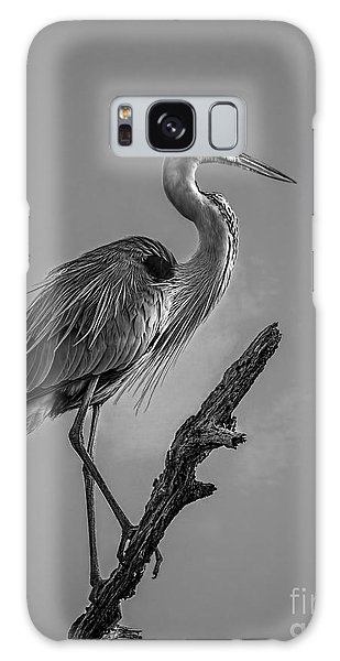 Egret Galaxy Case - Blue In Black-bw by Marvin Spates