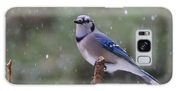 Blue Jay In Falling Snow Galaxy Case