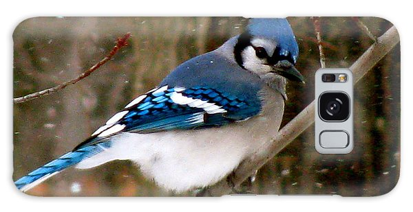 Blue Jay In The Snow Galaxy Case