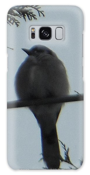 Blue Jay On Wire Galaxy Case