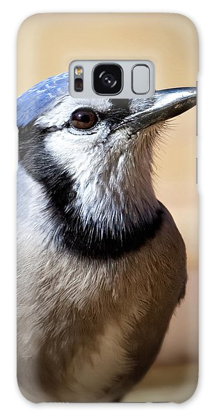 Blue Jay Portrait Galaxy Case