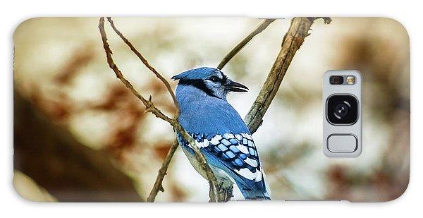 Blue Jay Galaxy Case by Robert Frederick