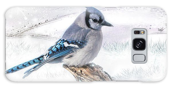Blue Jay Snow Galaxy Case