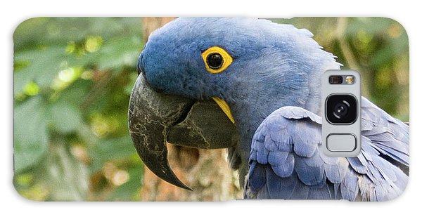 Blue Macaw Galaxy Case