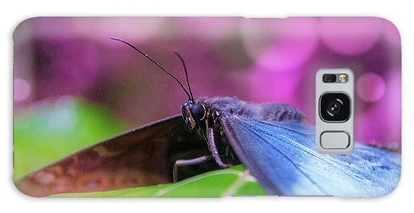 Blue Morpho  Butterfly 2 Galaxy Case