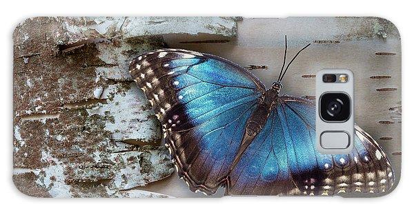 Blue Morpho Butterfly On White Birch Bark Galaxy Case