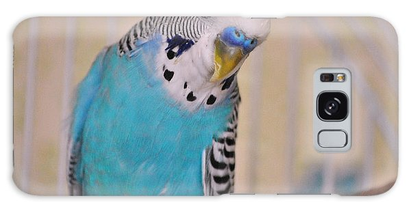 Blue Parakeet Galaxy Case