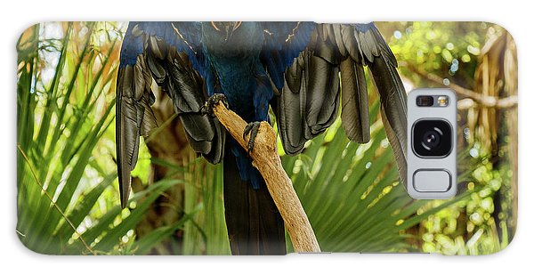 Blue Parrot Galaxy Case
