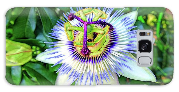 Blue Passion Flower Galaxy Case by Sue Melvin