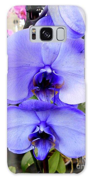 Blue Phalaenopsis Orchid Galaxy Case