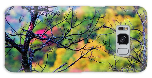 Blue Ridge Autumn Galaxy Case