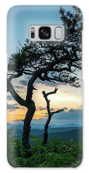 Blue Ridge Mountains Dr. Tree Galaxy Case