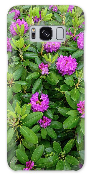 Blue Ridge Mountains Rhododendron Blooming Galaxy Case