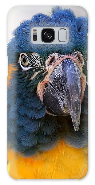 Blue-throated Macaw Close-up Galaxy Case