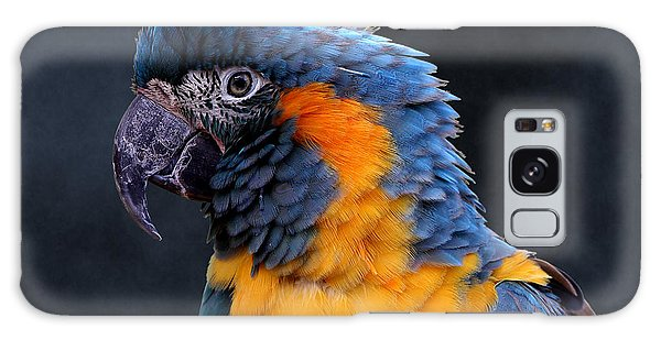 Blue-throated Macaw Profile Galaxy Case