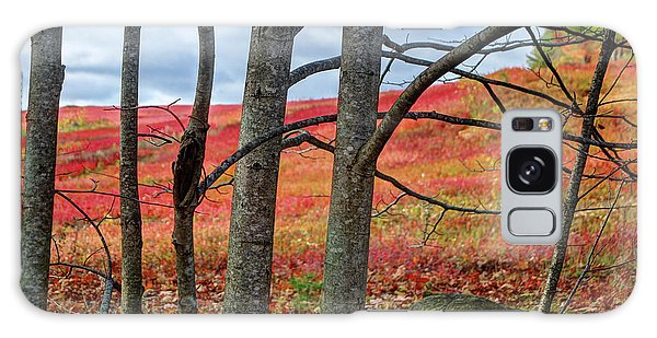 Blueberry Field Through The Wall - Cropped Galaxy Case