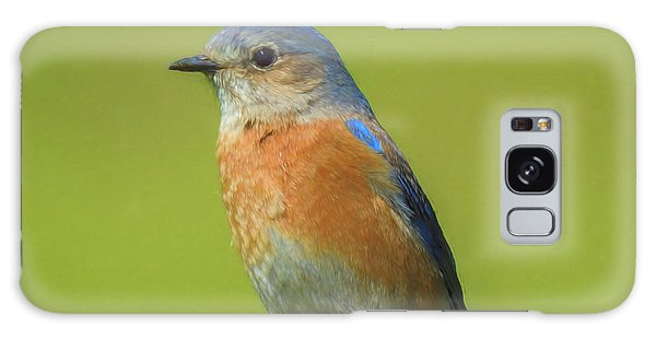 Bluebird Digital Art Galaxy Case