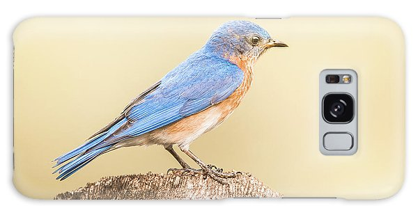 Bluebird On Fence Post Galaxy Case by Robert Frederick