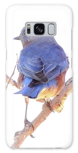 Bluebird On White Galaxy Case by Robert Frederick