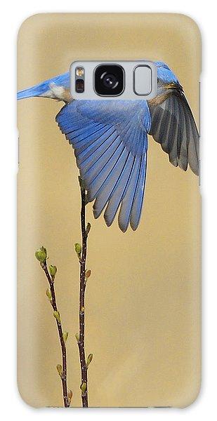 Bluebird Takes Flight Galaxy Case