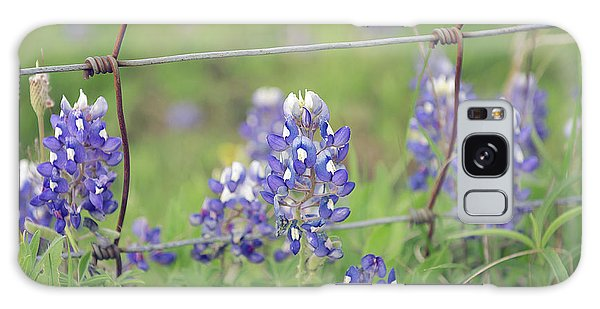 Bluebonnets By The Fence Galaxy Case