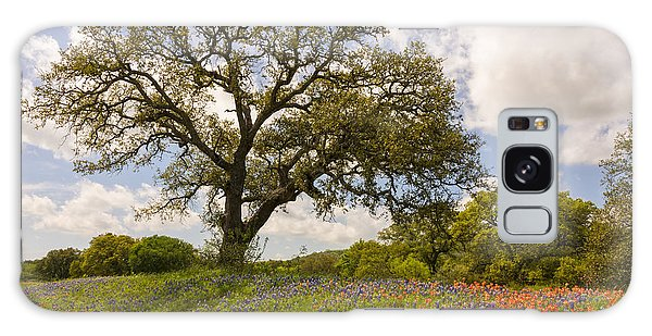 Bluebonnets Paintbrush And An Old Oak Tree - Texas Hill Country Galaxy Case