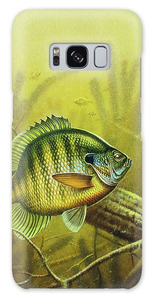 Bluegill And Jig Galaxy Case