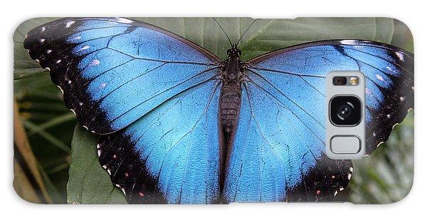 Blue Morph Galaxy Case