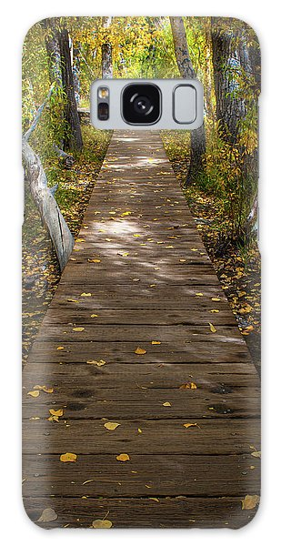 Boardwalk Over Convict Creek Galaxy Case
