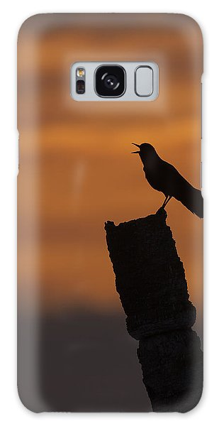 Boat-tailed Grackle At Sunset Galaxy Case