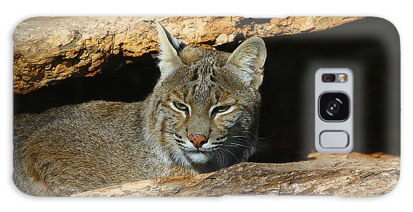 Bobcat Hiding In A Log Galaxy Case