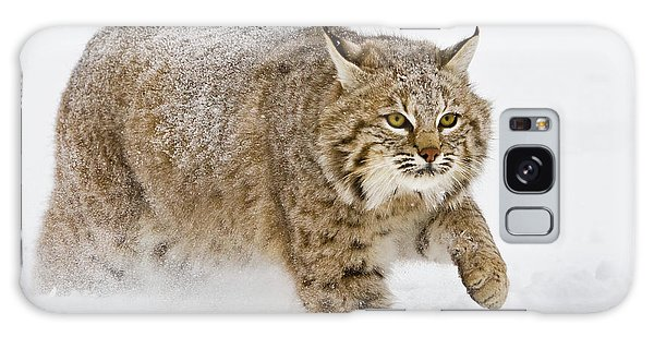 Bobcat In Snow Galaxy Case