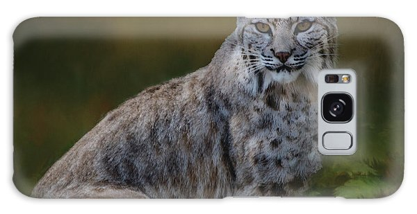 Bobcat On Alert Galaxy Case