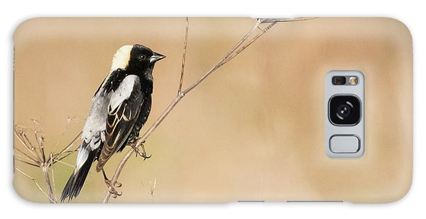 Galaxy Case featuring the photograph Bobolink  by Ricky L Jones