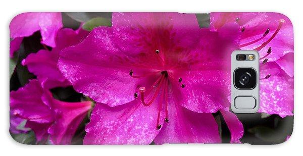 Bold Pink Flower Galaxy Case
