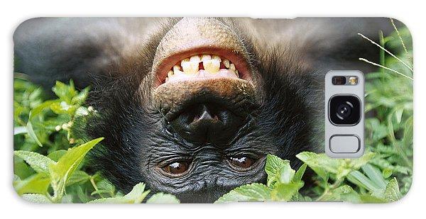 Bonobo Pan Paniscus Smiling Galaxy Case