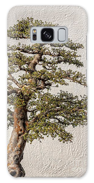 Bonsai Tree Galaxy Case