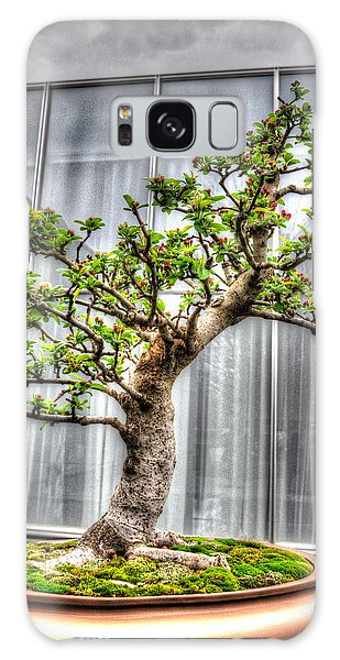 Bonsai Tree II Galaxy Case by Wade Brooks