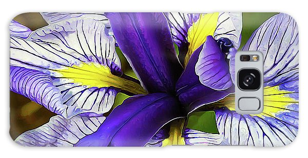 Boothbay Beauty Galaxy Case