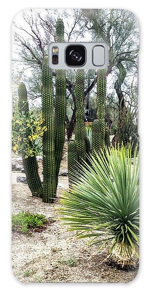 Borrego Botanical Garden Galaxy Case