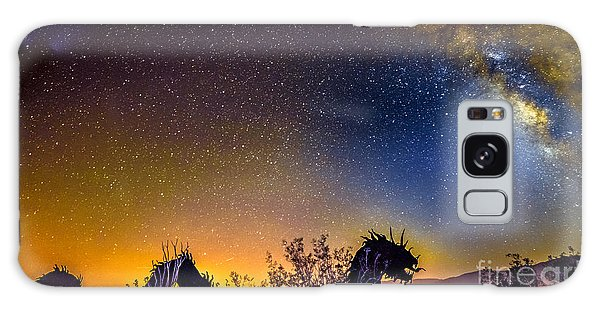 Borrego Springs Dragon Galaxy Case