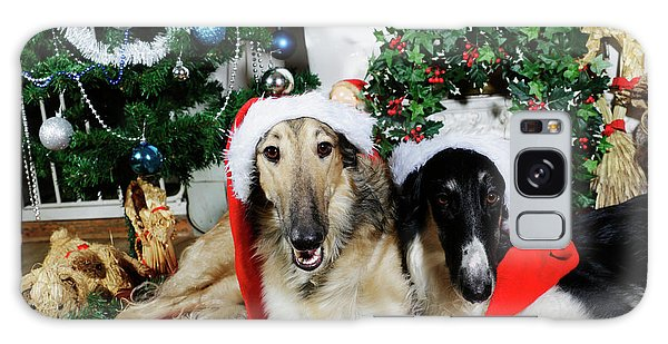 Borzoi Puppies Wishing A Merry Christmas Galaxy Case by Christian Lagereek