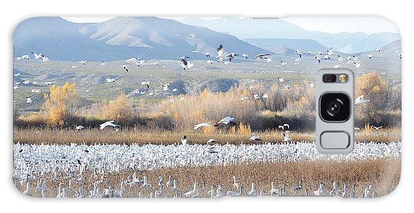 Bosque Del Apache Snow Geese Landscape Galaxy Case by Andrea Hazel Ihlefeld