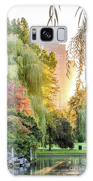 Boston Public Garden Sunrise Galaxy Case