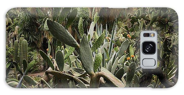 Botanic Garden Valencia Galaxy Case