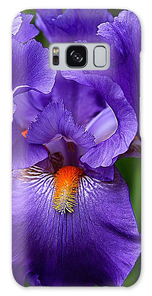 Botanical Beauty In Purple Galaxy Case by Toma Caul