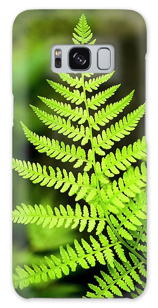 Botanical Fern Galaxy Case