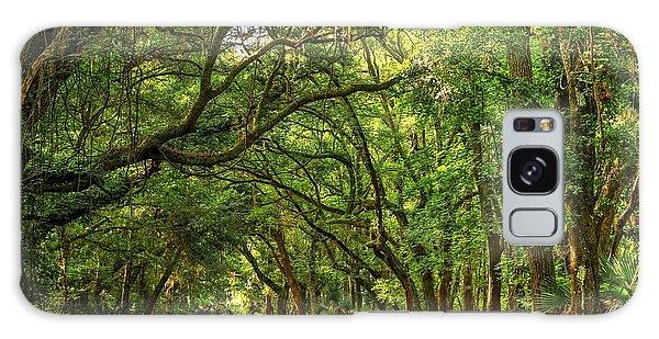 Botany Bay Edisto Island South Carolina Road Light And Shadow Galaxy Case